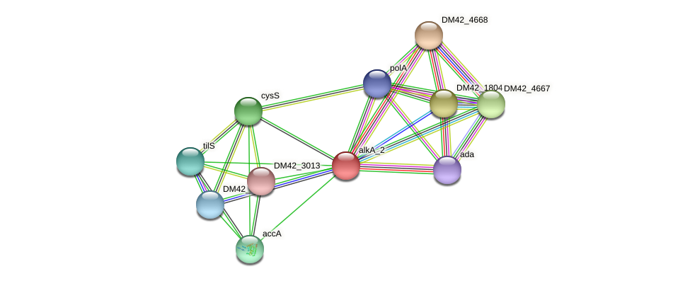 WL94_39550 protein (Burkholderia cepacia) - STRING interaction network