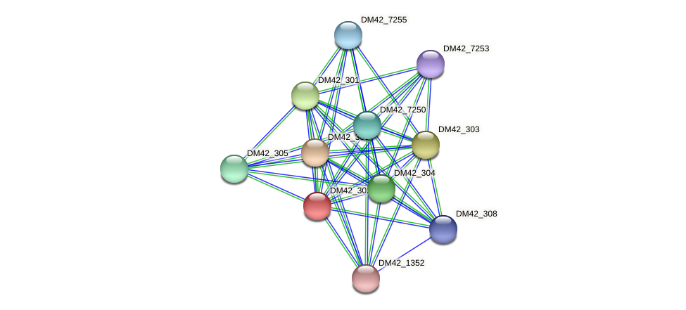 DM42_302 protein (Burkholderia cepacia) - STRING interaction network