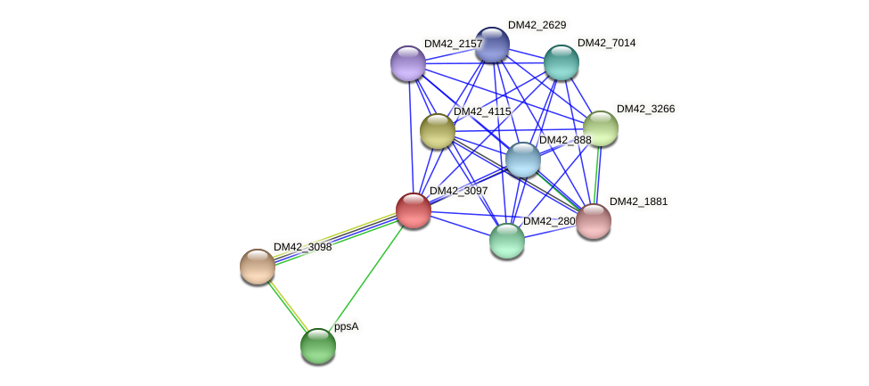 WL94_30915 protein (Burkholderia cepacia) - STRING interaction network