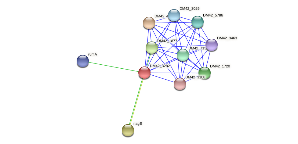 WL94_31840 protein (Burkholderia cepacia) - STRING interaction network