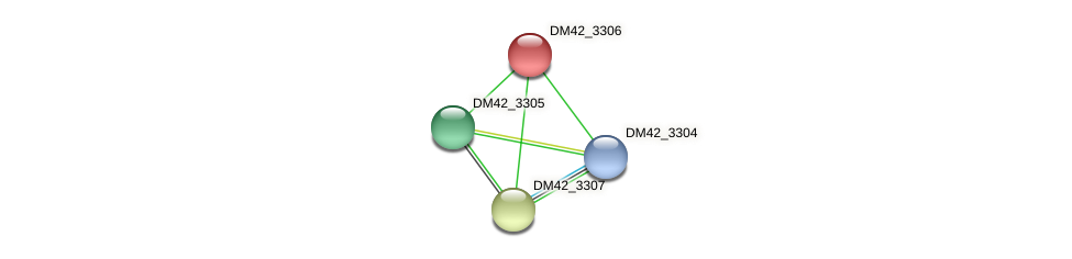 DM42_3306 protein (Burkholderia cepacia) - STRING interaction network
