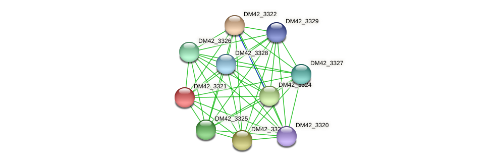 DM42_3321 protein (Burkholderia cepacia) - STRING interaction network