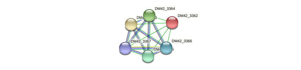DM42_3362 protein (Burkholderia cepacia) - STRING interaction network