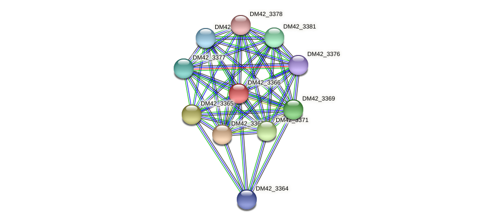 DM42_3366 protein (Burkholderia cepacia) - STRING interaction network