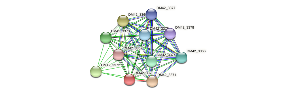 DM42_3370 protein (Burkholderia cepacia) - STRING interaction network