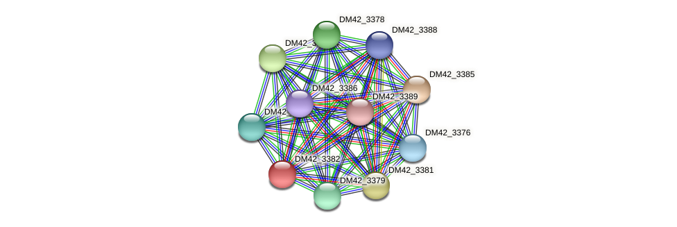DM42_3382 protein (Burkholderia cepacia) - STRING interaction network