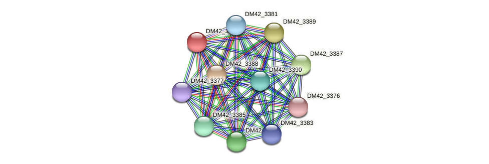 DM42_3386 protein (Burkholderia cepacia) - STRING interaction network