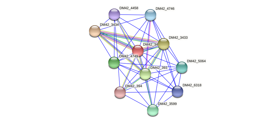 DM42_3435 protein (Burkholderia cepacia) - STRING interaction network