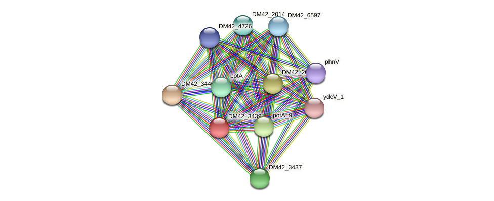 WL94_29925 protein (Burkholderia cepacia) - STRING interaction network