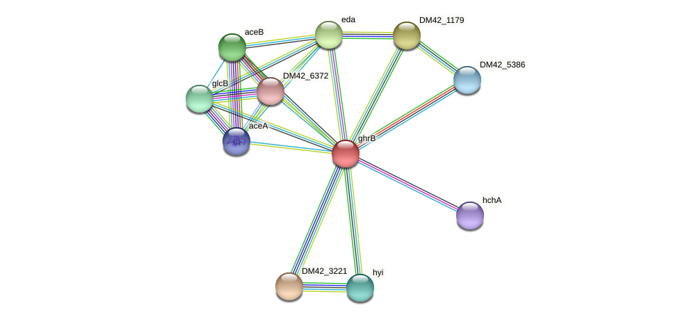 ghrB protein (Burkholderia cepacia) - STRING interaction network