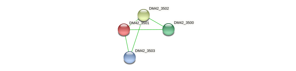 DM42_3501 protein (Burkholderia cepacia) - STRING interaction network