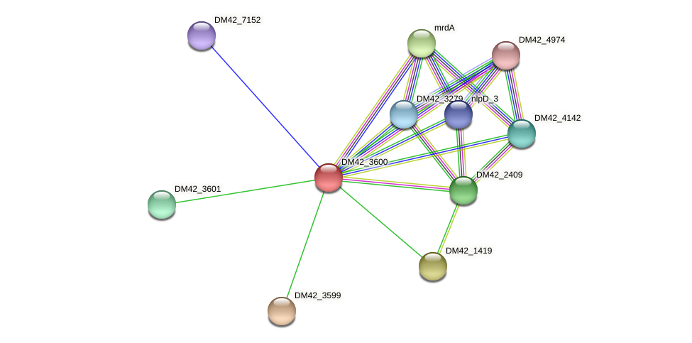 WL94_11605 protein (Burkholderia cepacia) - STRING interaction network