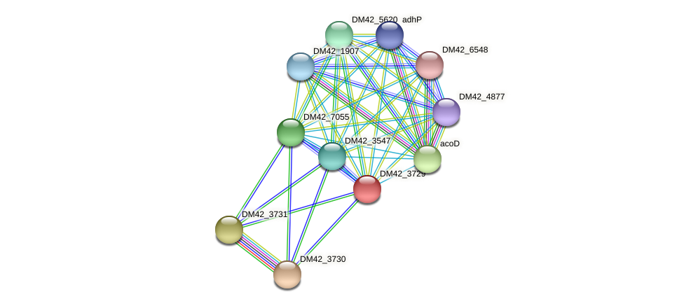 WI67_23415 protein (Burkholderia cepacia) - STRING interaction network
