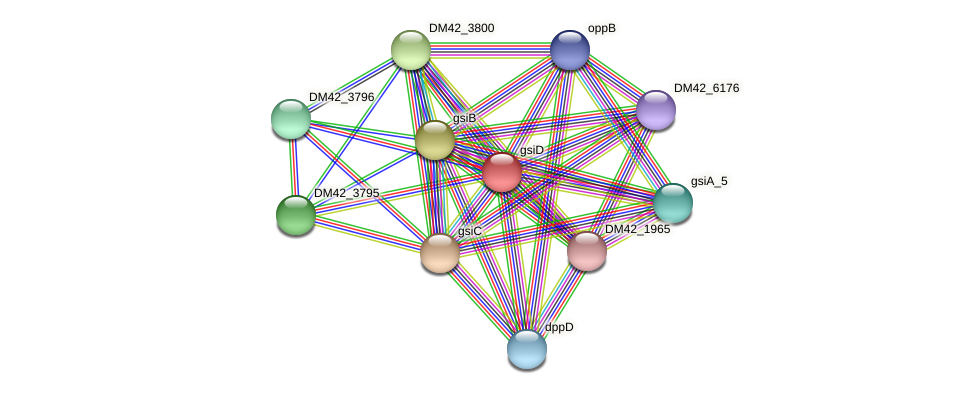 gsiD protein (Burkholderia cepacia) - STRING interaction network