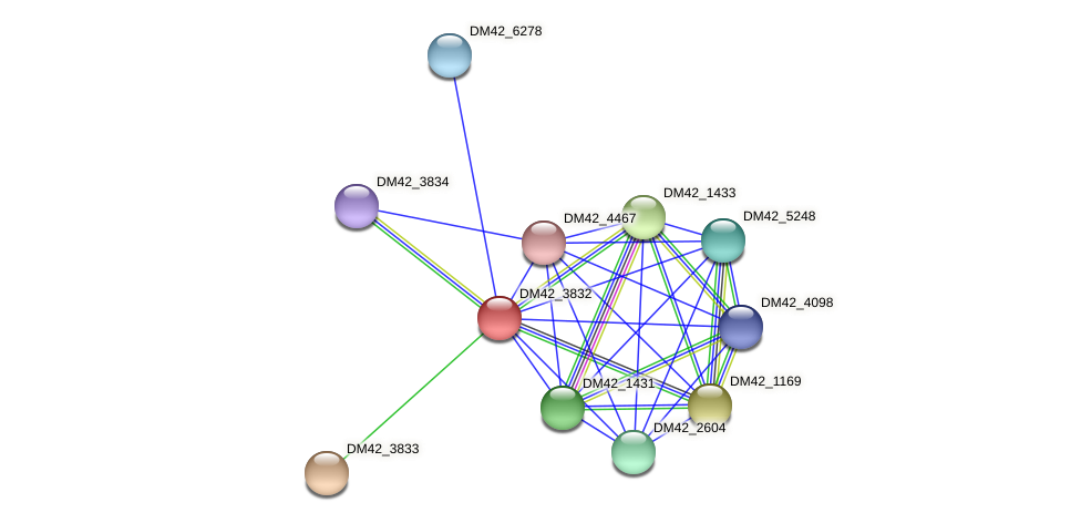 DM42_3832 protein (Burkholderia cepacia) - STRING interaction network