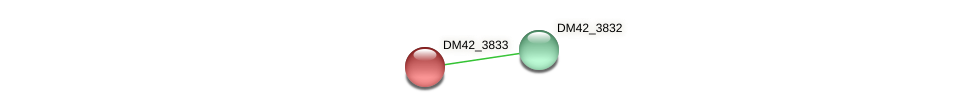 DM42_3833 protein (Burkholderia cepacia) - STRING interaction network