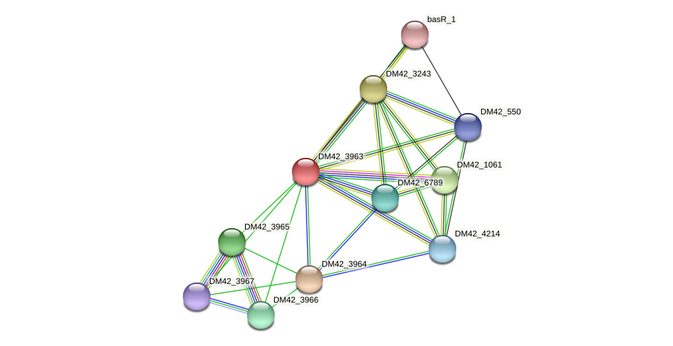 DM42_3963 protein (Burkholderia cepacia) - STRING interaction network