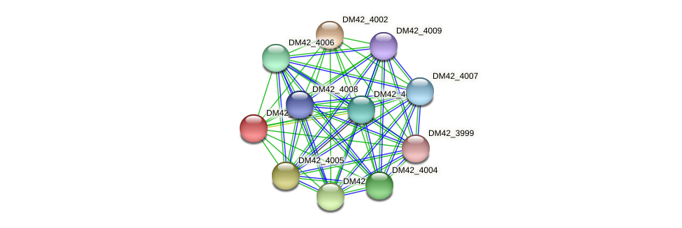 DM42_4001 protein (Burkholderia cepacia) - STRING interaction network