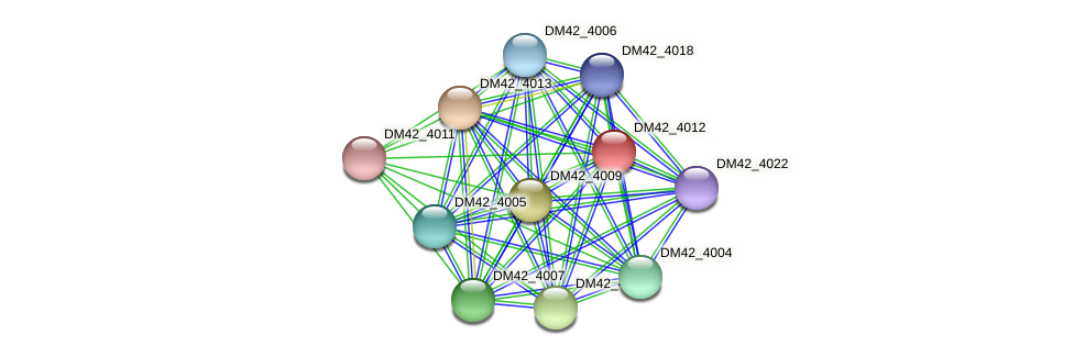 DM42_4012 protein (Burkholderia cepacia) - STRING interaction network
