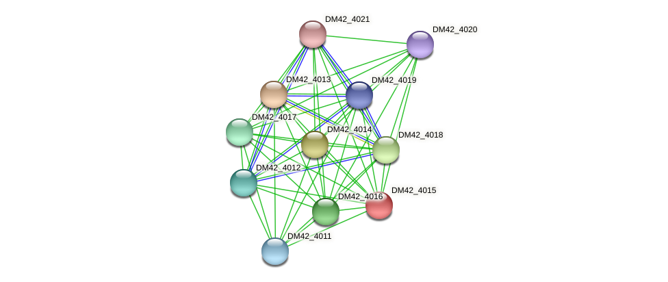 DM42_4015 protein (Burkholderia cepacia) - STRING interaction network