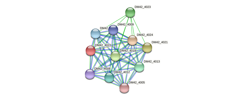 DM42_4022 protein (Burkholderia cepacia) - STRING interaction network