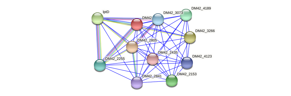 WL94_26175 protein (Burkholderia cepacia) - STRING interaction network