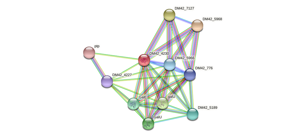 WI67_21300 protein (Burkholderia cepacia) - STRING interaction network