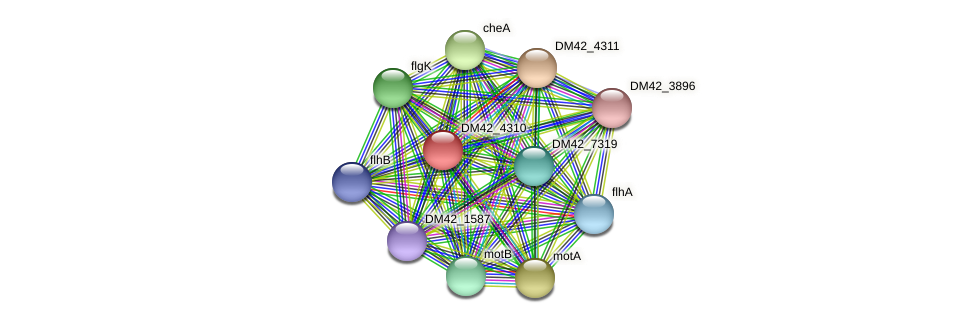 WL94_27335 protein (Burkholderia cepacia) - STRING interaction network