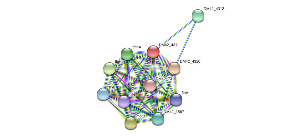 WI67_20920 protein (Burkholderia cepacia) - STRING interaction network