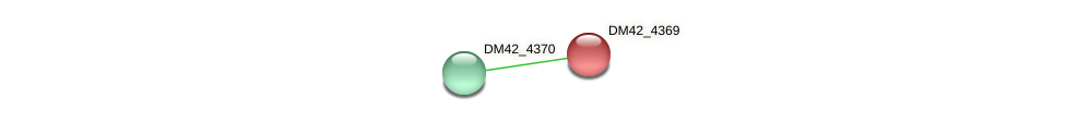 DM42_4369 protein (Burkholderia cepacia) - STRING interaction network