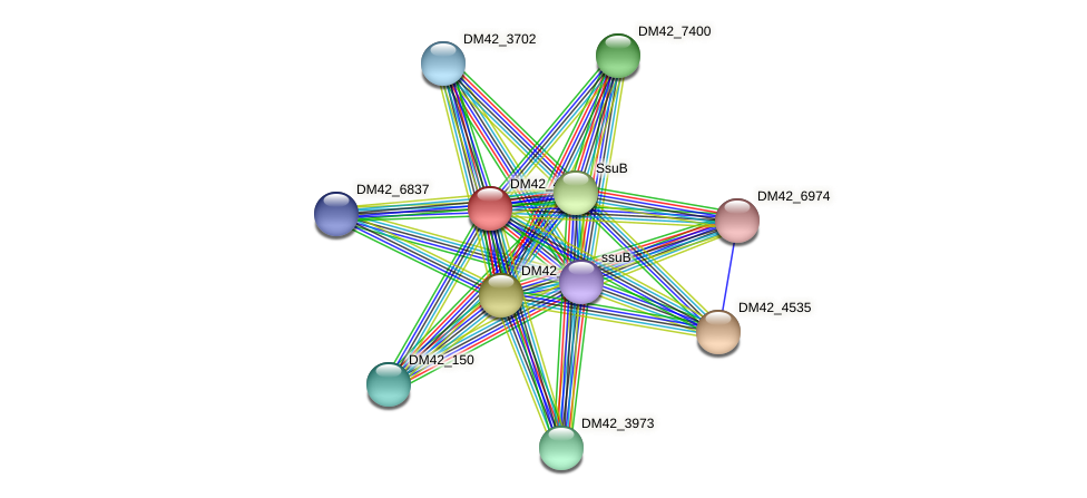 DM42_4536 protein (Burkholderia cepacia) - STRING interaction network