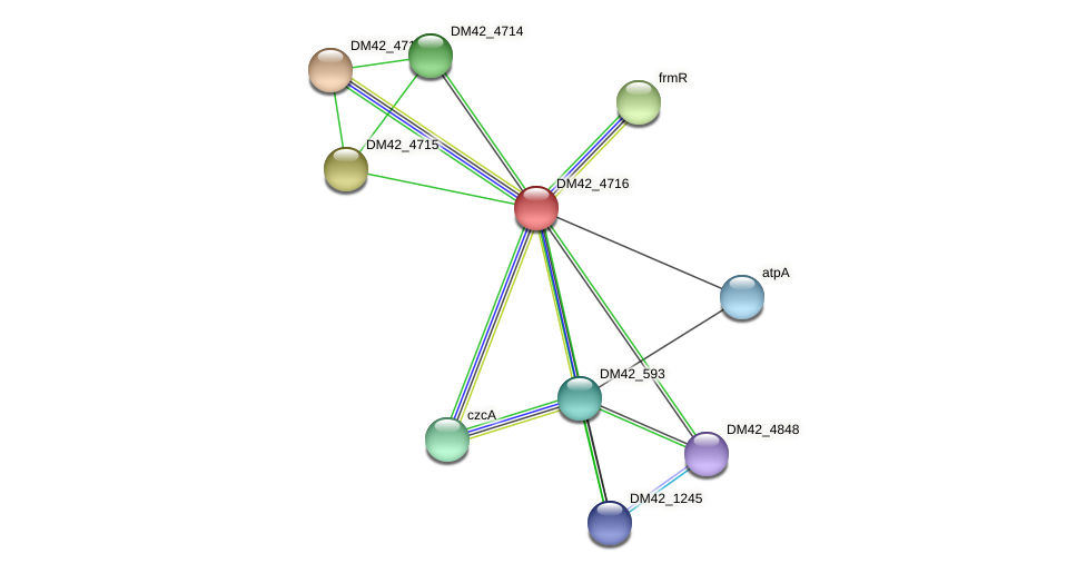 DM42_4716 protein (Burkholderia cepacia) - STRING interaction network