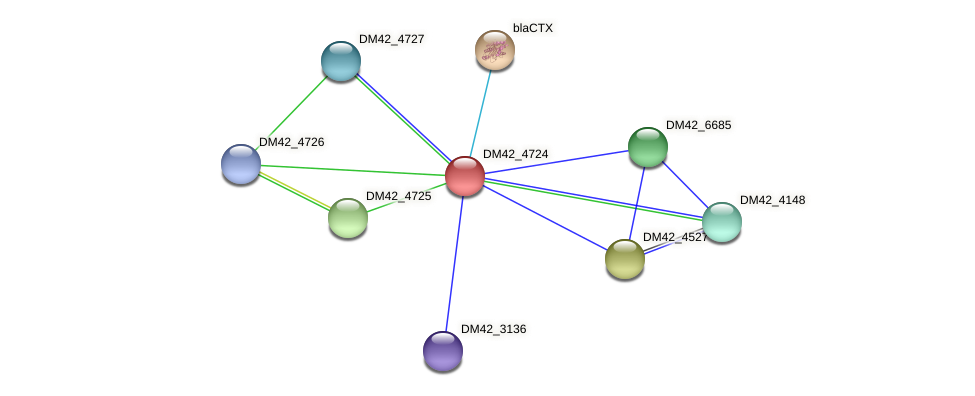 WL94_01325 protein (Burkholderia cepacia) - STRING interaction network