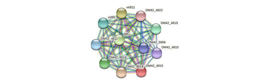 DM42_4815 protein (Burkholderia cepacia) - STRING interaction network