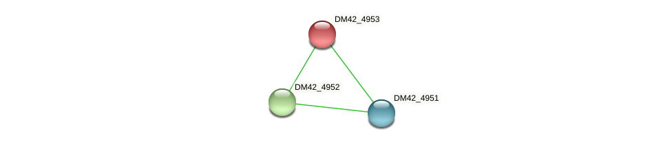 DM42_4953 protein (Burkholderia cepacia) - STRING interaction network