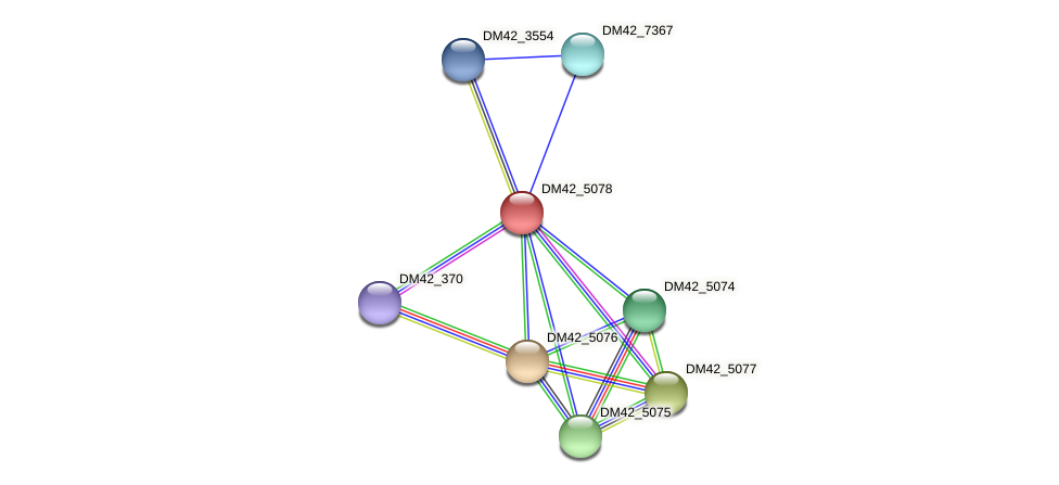 DM42_5078 protein (Burkholderia cepacia) - STRING interaction network