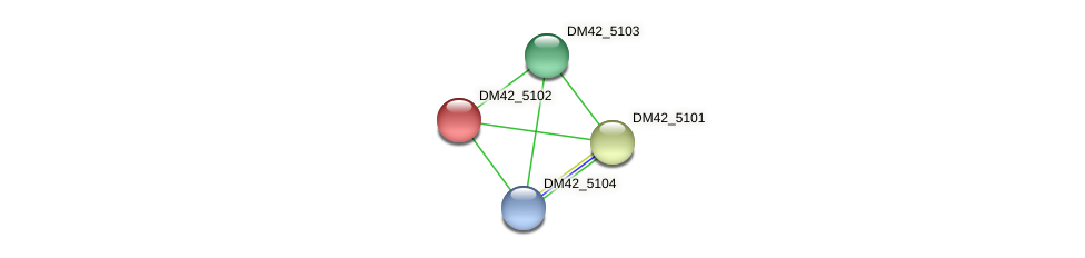 DM42_5102 protein (Burkholderia cepacia) - STRING interaction network