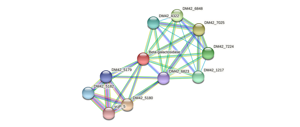 WL94_00895 protein (Burkholderia cepacia) - STRING interaction network