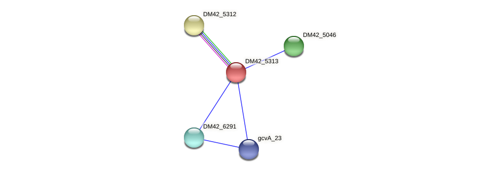 DM42_5313 protein (Burkholderia cepacia) - STRING interaction network