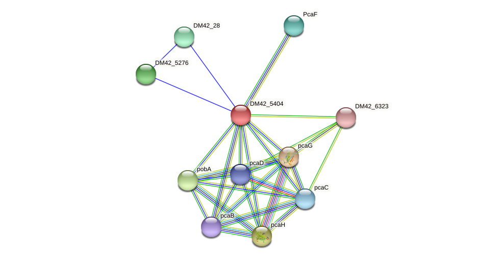 WL94_02335 protein (Burkholderia cepacia) - STRING interaction network
