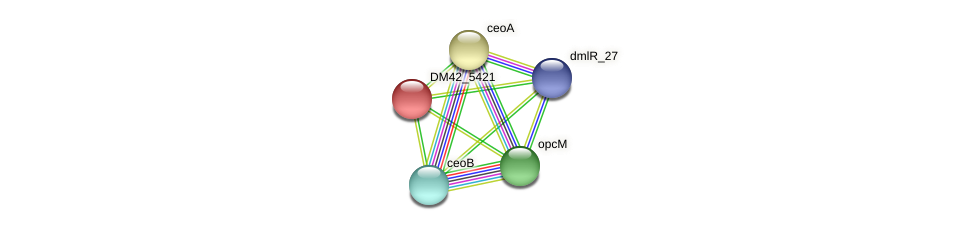 WI67_30875 protein (Burkholderia cepacia) - STRING interaction network