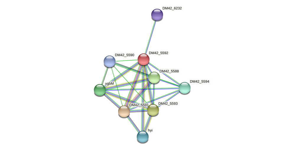 WL94_25195 protein (Burkholderia cepacia) - STRING interaction network