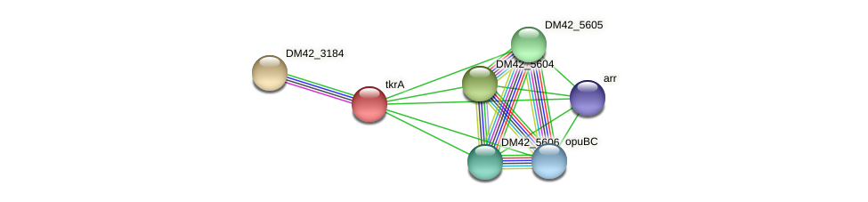 WI67_29830 protein (Burkholderia cepacia) - STRING interaction network