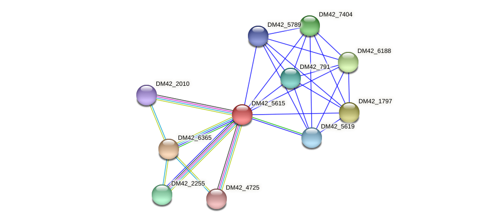 WL94_25340 protein (Burkholderia cepacia) - STRING interaction network