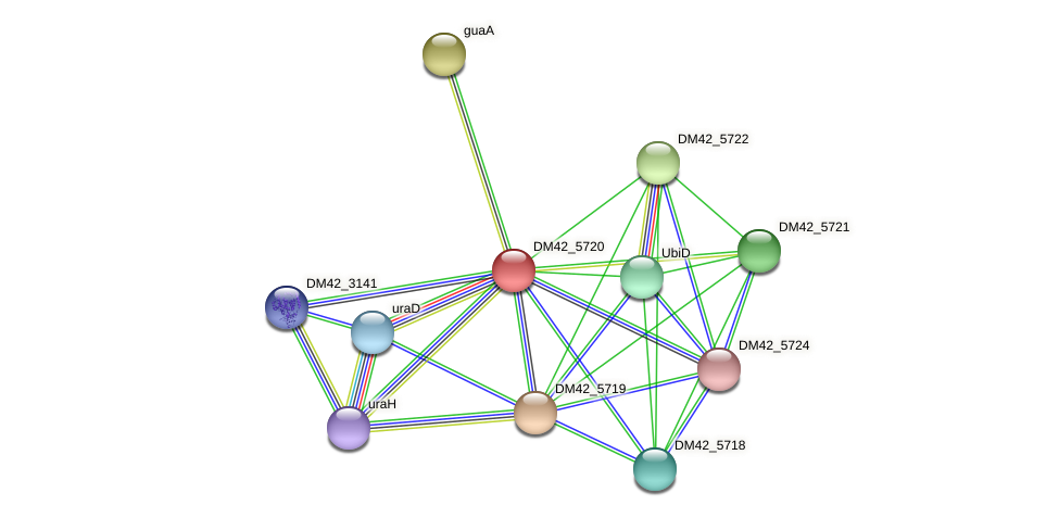 DM42_5720 protein (Burkholderia cepacia) - STRING interaction network