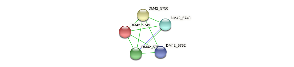 DM42_5749 protein (Burkholderia cepacia) - STRING interaction network