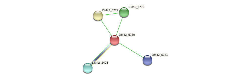DM42_5780 protein (Burkholderia cepacia) - STRING interaction network