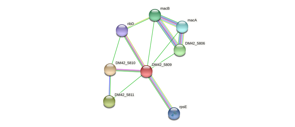 DM42_5809 protein (Burkholderia cepacia) - STRING interaction network