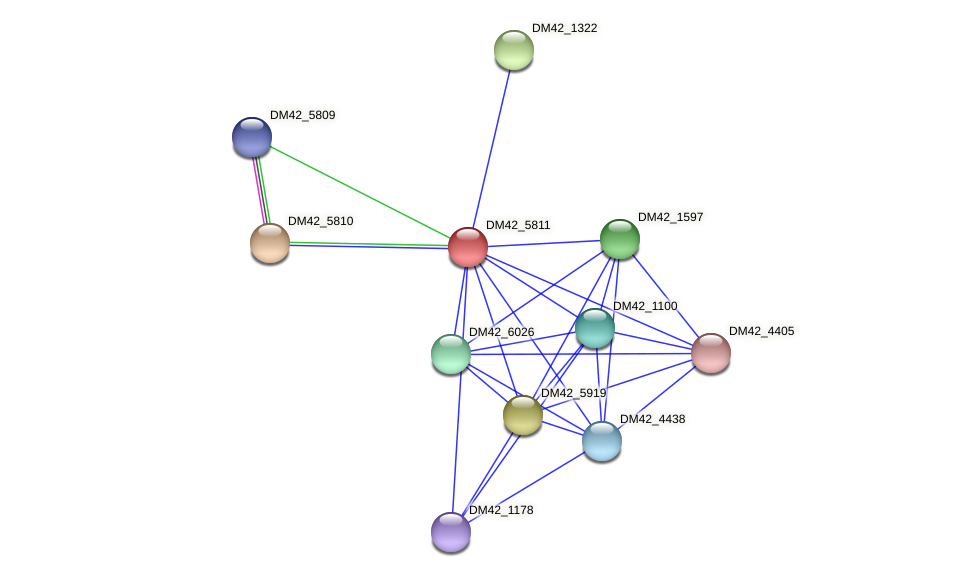 DM42_5811 protein (Burkholderia cepacia) - STRING interaction network