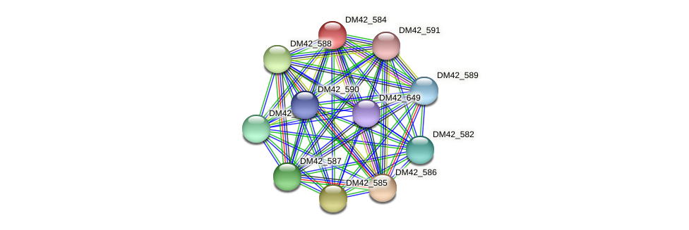 DM42_584 protein (Burkholderia cepacia) - STRING interaction network